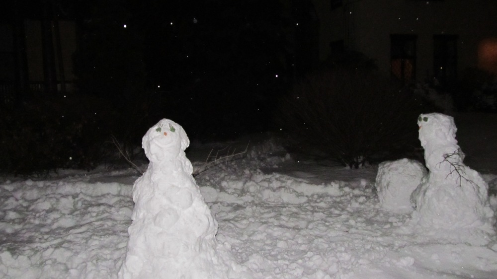 Snow men at Night