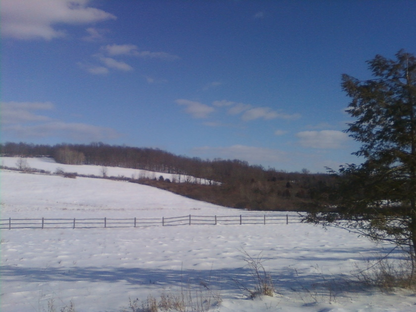 Snow and Fences