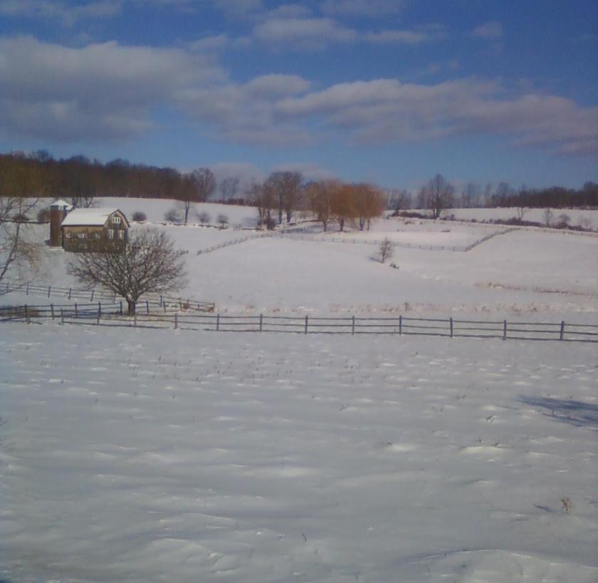 Winter's Last Grasp