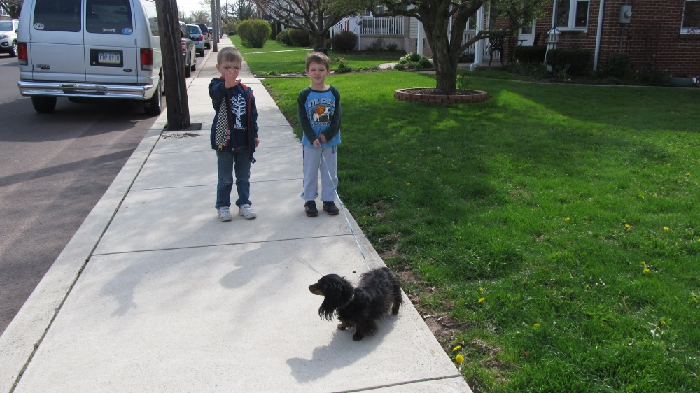 Kids - Dogs and Learning to be Patient!