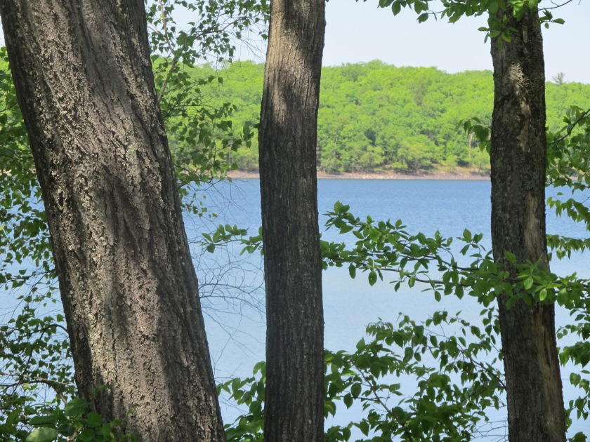 Summer Previews Part 3 -Quiet moments at the Lake
