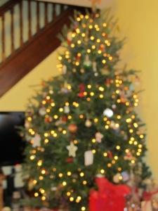 Family Christmas 2011 005