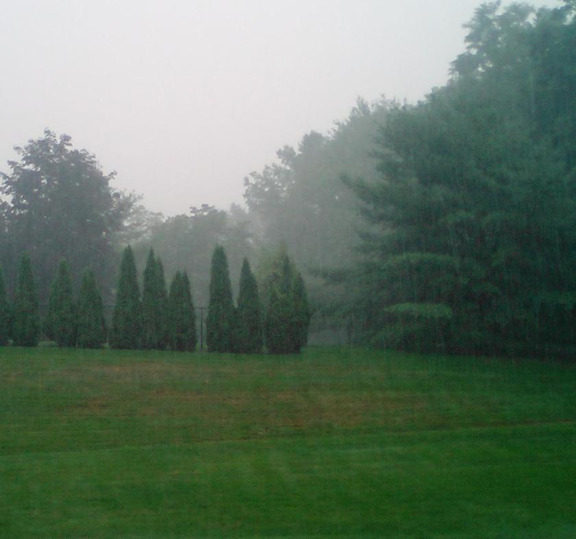 Rainy day at Radica