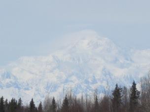 new-alaska-pics-7