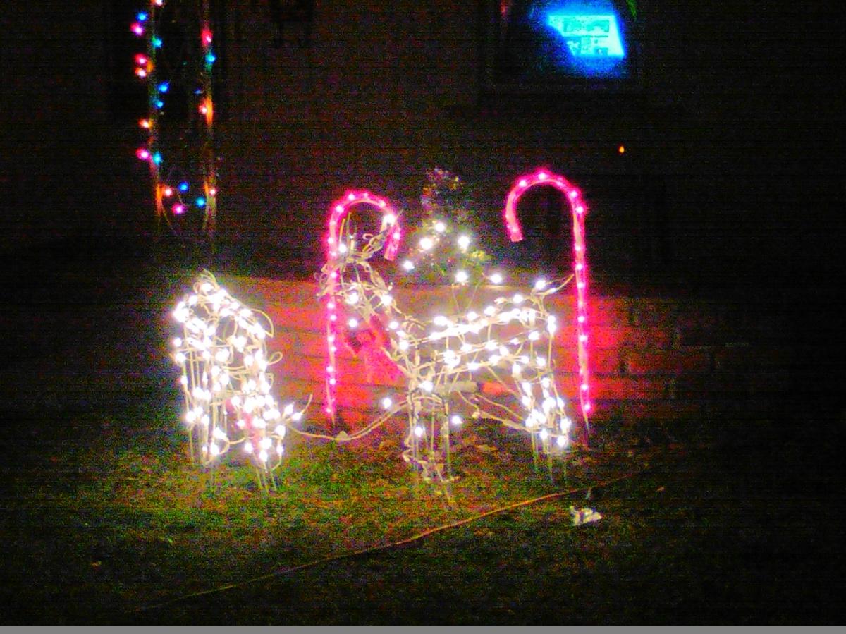 One Christmas Amazed